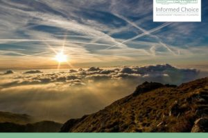 Latest news & insights from Informed Choice