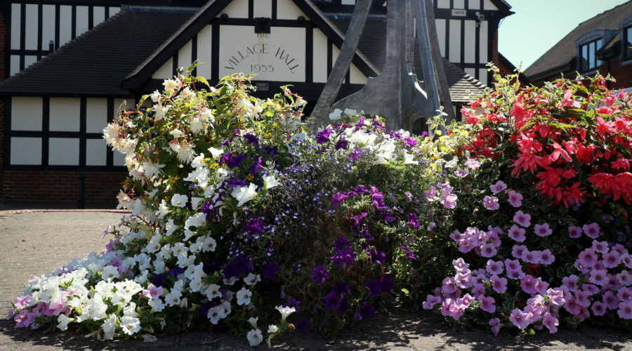 Cranleigh reaches RHS Britain in Bloom 2019 finals
