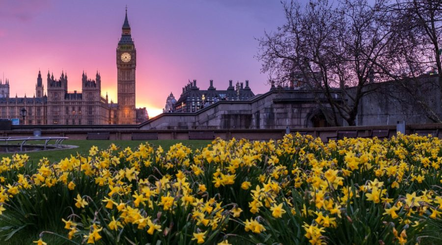 Spring Statement Highlights & Analysis