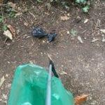 Litter picking is a dangerous sport!