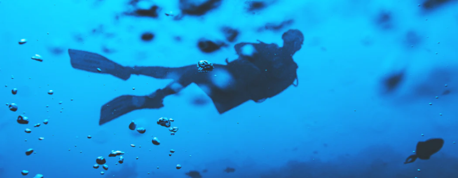 Deep diving into your financial future